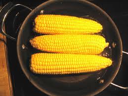 kukurydza gmo